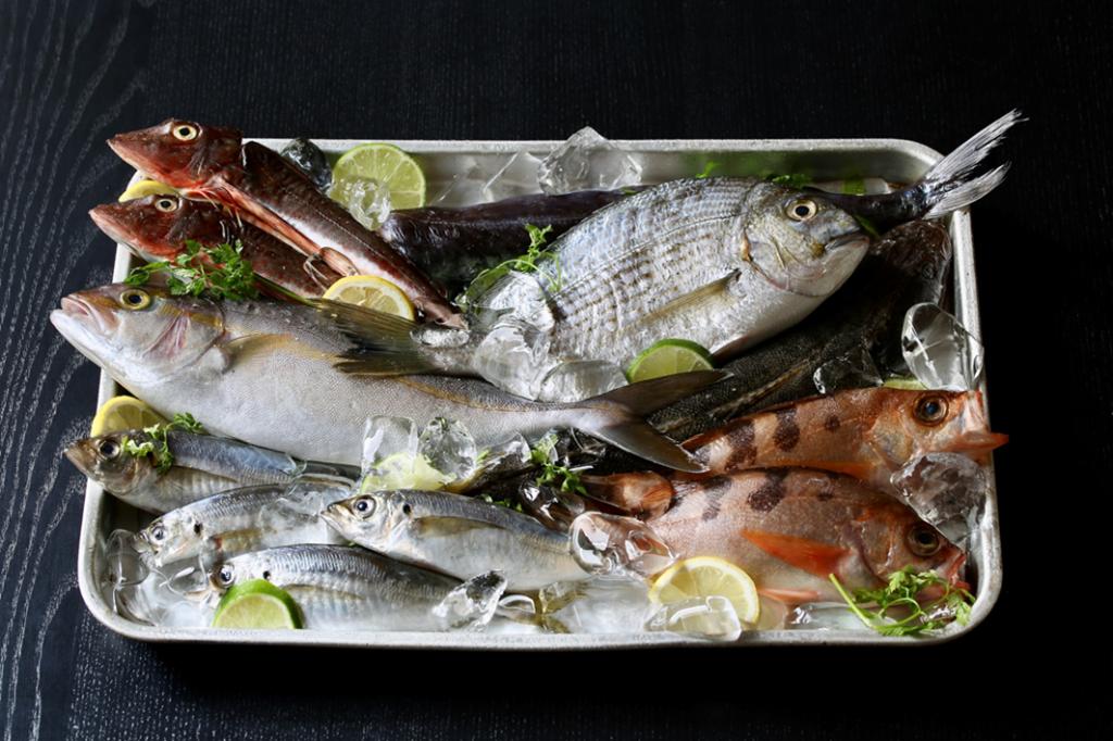 魚卓おまかせ地魚・鮮魚セット